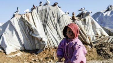 سوريا: وفاة 15 طفلا أغلبهم رضع بمخيم الركبان للنازحين جراء البرودة الشديدة 4