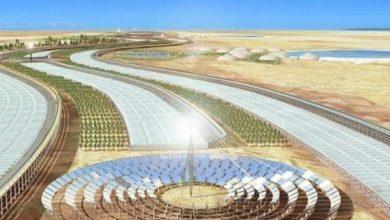 المغرب يحتل المركز الثاني في العالم في مؤشر البيئة 6