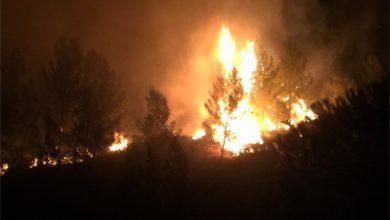 عاجل..اندلاع حريق بغابة السلوقية بطنجة 6