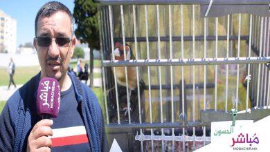 طنجة تحتضن مباراة تغريد طائر الحسون بحضور 300 مشارك (فيديو) 6