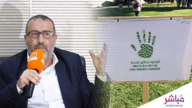 عمدة طنجة : هناك مغالطات حول حدائق المندوبية..الأشجار والقبور لن تٌمسّ..(فيديو) 3