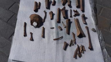انتشال عظام بشرية في عملية حفر حدائق المندوبية يخلف سخطا شعبيا 3