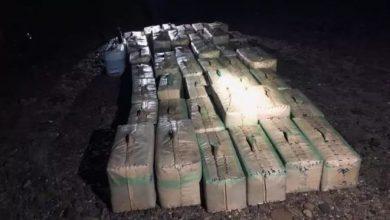 """حجز 600 كلغ من """"الشيرا"""" معدة للتهريب بالحدود المغربية الجزائرية 5"""