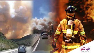 بالفيديو حريق مهول يأتي على هكتارات من غابات عين لحصن ضواحي تطوان 3
