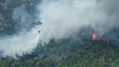 عاجل..نشوب حريق مهول بغابة طريفة الإسبانية 2