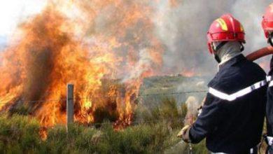النيران تلتهم هكتارين من الغطاء الغابوي بتطوان 2