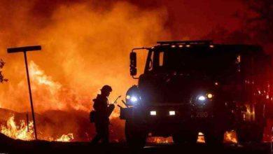 """اندلاع حريق بغابة """"عين الحصن"""" والسلطات تسارع الزمن لإخماده 2"""