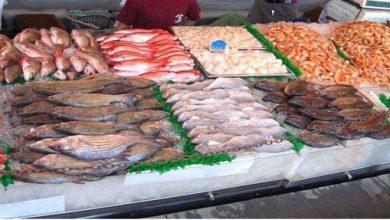 ضبط مواد غدائية فاسدة بمطاعم وفنادق مصنفة بمدينة طنجة 5