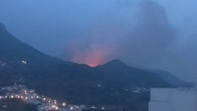 حريق مهول يأتي على هكتارات من الغطاء الغابوي ضواحي تطوان 4