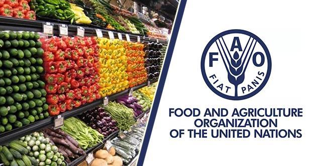 الفاو: أسعار الأغذية العالمية تتراجع  للشهر الثاني على التوالي 1