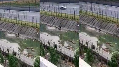 """شرطة طنجة تخضع شريط """"واد مغوغة"""" لبحث ميداني وخبرة تقنية 4"""