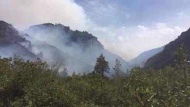 """اندلاع حريق بالمنتجع الغابوي """"أقشور"""" 5"""