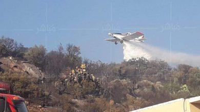 الوقاية المدنية تسيطر على حريق غابة شراقة ضواحي طنجة (صور) 4