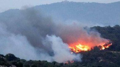 الحرائق تستمر في الإجهاز على غابات جهة الشمال 2