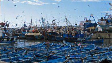 مندوبية الصيد البحري بطنجة تحذر القوارب من الإبحار 4