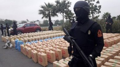 """ضبط قرابة 4 أطنان من مخدر """"الشيرا"""" ضواحي الناظور 4"""