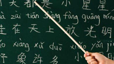 تعليم اللغة الصينية لأول مرة في مدرسة ابتدائية بطنجة 5