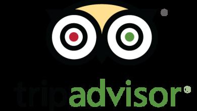 سائحة امريكية تقاضي موقع Tripadvisor بسبب سقوطها من فوق ناقة بالمغرب 2