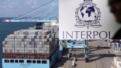 حصري..حاوية تستنفر السلطات الأمنية بميناء طنجة المتوسط 2