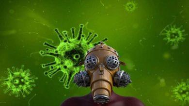 مفاجأة.. حيوان يتواجد بيننا دائماً يمكنه نقل فيروس كورونا بسهولة 6