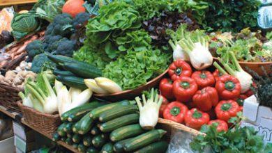 إنتاج المغرب من الخضراوات سيغطي حاجيات السوق إلى غاية دجنبر 6