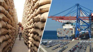 عمليات تزويد السوق بالحبوب عبر الموانئ الوطنية مستمرة في أحسن الظروف 4