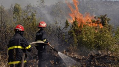 حريق يأتي على 17 هكتار من الغطاء الغابوي بأوريكا 3
