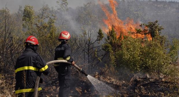 حريق يأتي على 17 هكتار من الغطاء الغابوي بأوريكا 1