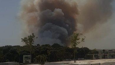 حريق الغابة الديبلوماسية أتى على 36 هكتارا من الغطاء الغابوي 2
