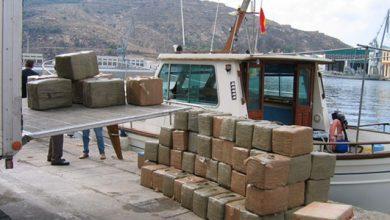 شبكة خطيرة تهرب الحشيش بميناء طنجة المتوسط بطريقة جديدة 2