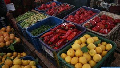 انخفاض طفيف في أسعار المواد الغذائية بمدن الشمال 2