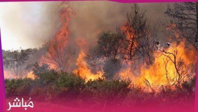 الوقاية المدنية تسيطر على حريق مهول قرب المستشفى الميداني بالغابة الدبلوماسية 3