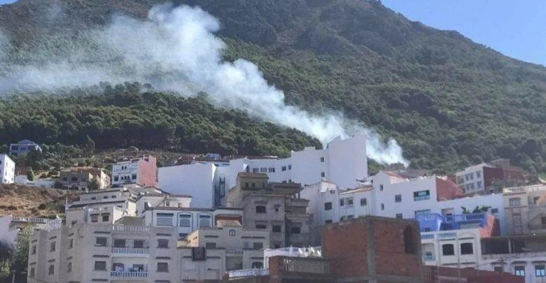 السلطات تسارع الزمن للسيطرة على حريق بإقليم شفشاون 1