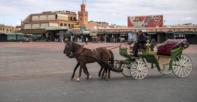 مذكرة تشخص الوضع الوبائي في المغرب وكيفية التعافي من الجائحة 1