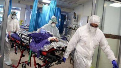 لماذا سجلت قطر أعلى الإصابات بكورونا في العالم من حيث عدد السكان وأقل الوفيات؟ 3