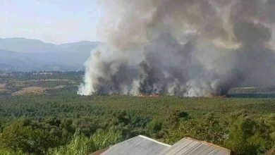 """من جديد..حريق يلتهم غابة """"المغابرة"""" بشفشاون 3"""
