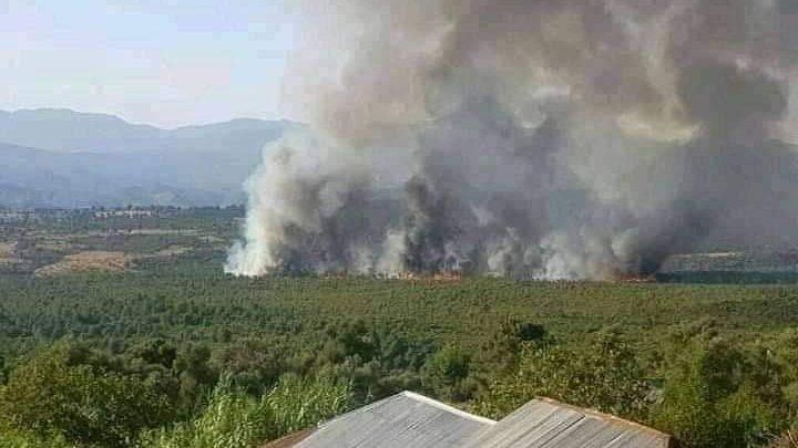 """من جديد..حريق يلتهم غابة """"المغابرة"""" بشفشاون 1"""