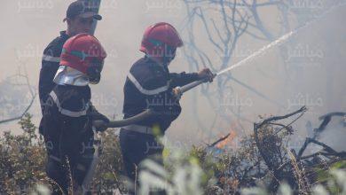 السلطات تسارع الزمن لإخماد حريق بغابة حوز الملاليين بعمالة المضيق-الفنيدق 28