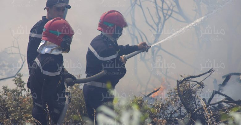السلطات تسارع الزمن لإخماد حريق بغابة حوز الملاليين بعمالة المضيق-الفنيدق 1