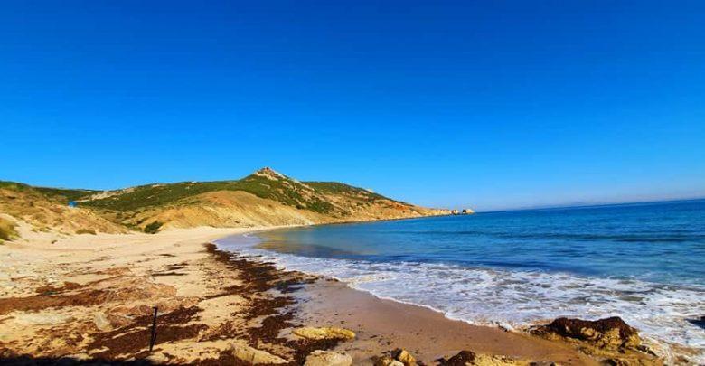 مسؤول: كورونا قابل للإنتشار في الشواطئ 1