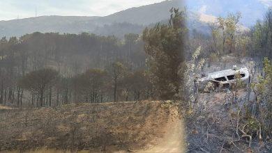 فرضية تورط مافيا الحشيش في حريق غابة عِلّيين بالفنيدق 6