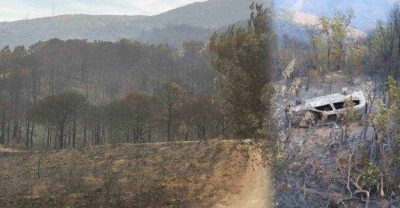 فرضية تورط مافيا الحشيش في حريق غابة عِلّيين بالفنيدق 1