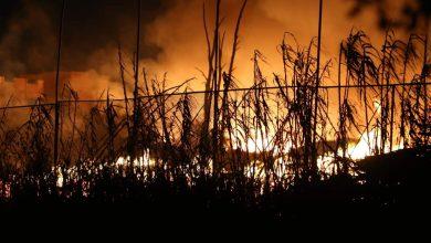 حرائق غابة حوز الملاليين بالمضيق تأتي على 1024 هكتارا 7