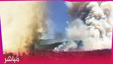 الحرائق تندلع من جديد بغابات بني عروس وتقترب من الساكنة 3