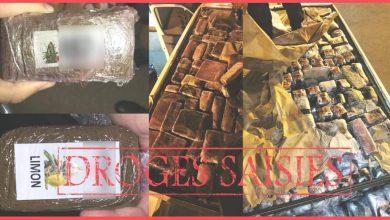 """ضبط 920 كلغ من """"الحشيش"""" على متن سيارة مسافر بميناء طنجة المتوسط 3"""