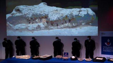 تعود لـ500 ألف مليون سنة..المغرب يستعيد 25 ألف قطعة أثرية منهوبة من فرنسا 6