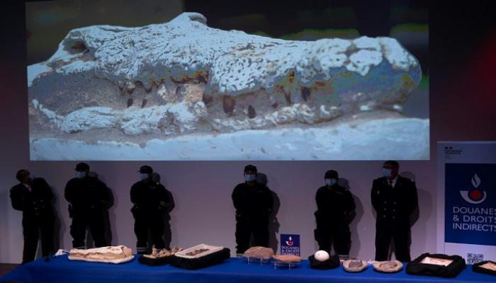 تعود لـ500 ألف مليون سنة..المغرب يستعيد 25 ألف قطعة أثرية منهوبة من فرنسا 1