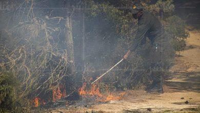 سلطات طنجة تسارع الزمن للسيطرة على حريق بالغابة الديبلوماسية 5