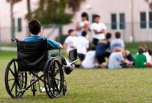 وزارة التضامن تُعلن توسيع العمل بالمنصة الرقمية الخاصة بشهادة الإعاقة 8