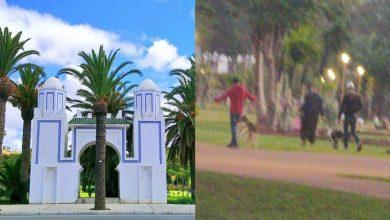 انتشار الكلاب في متنزه فيلا هاريس بطنجة يرعب الأطفال 3